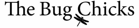 Bug-Chicks-Logo-1-e1450399138671