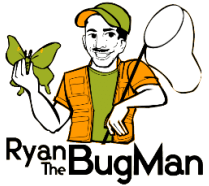 ryan-the-bug-man-logo